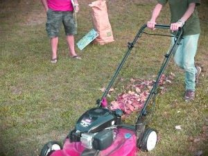 lawn-mowing-sevices-golders-green